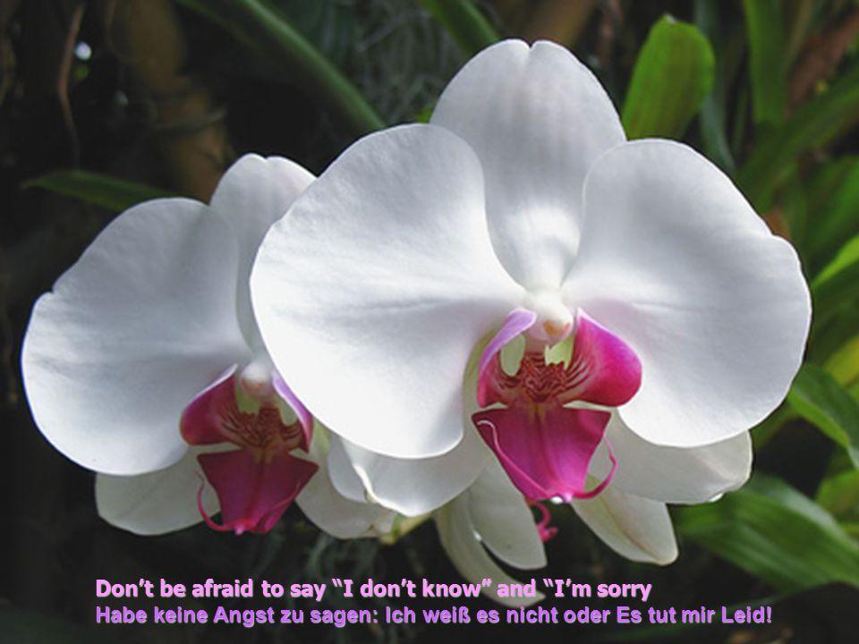 Don't be afraid to say I don't know and I'm sorry Habe keine Angst zu sagen: Ich weiß es nicht oder Es tut mir Leid!