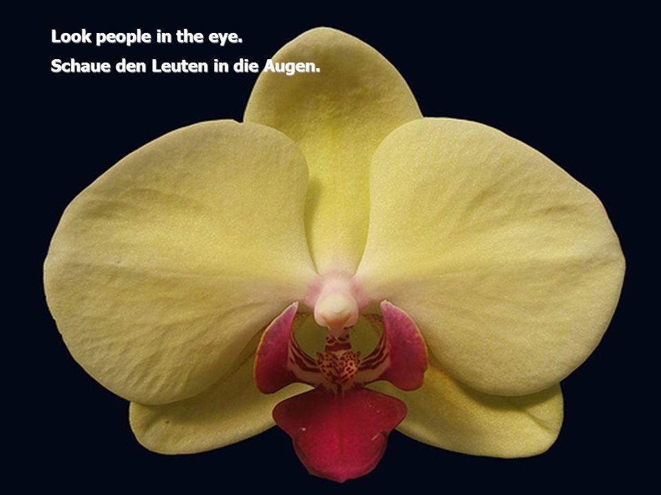 Look people in the eye. Schaue den Leuten in die Augen.