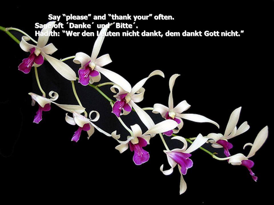 """Say """"please"""" and """"thank your"""" often. Sage oft ´Danke´ und ´Bitte´. Hadith: """"Wer den Leuten nicht dankt, dem dankt Gott nicht."""""""