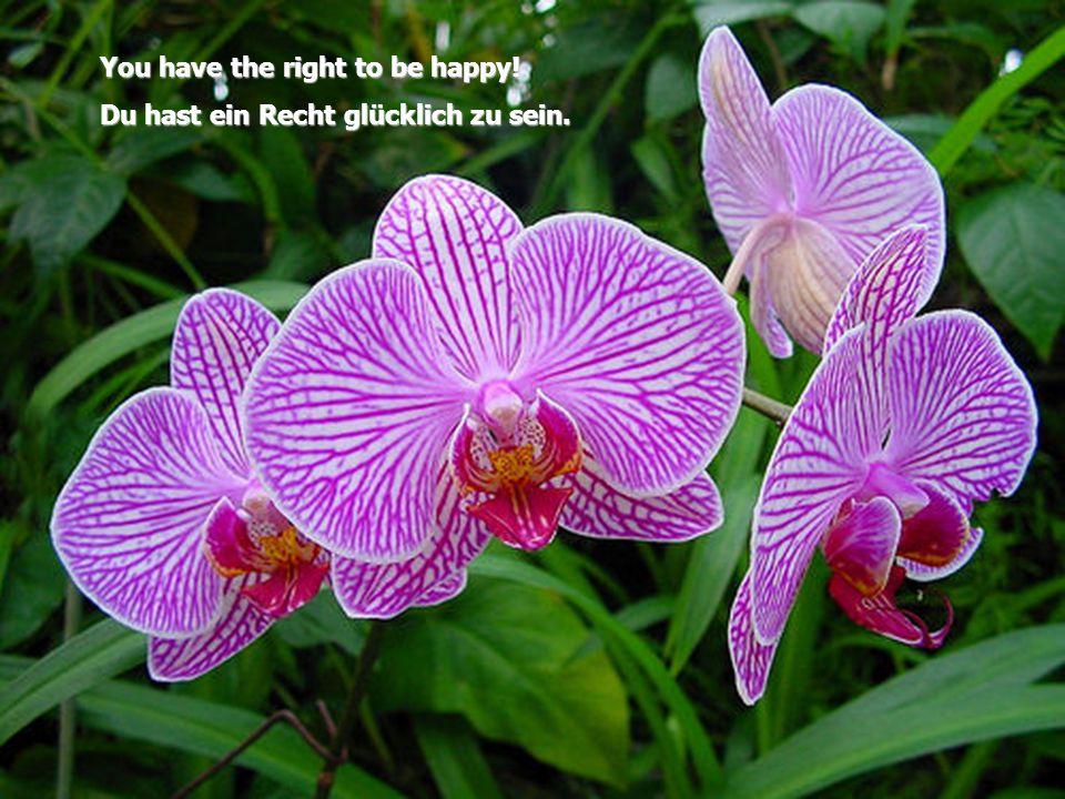 You have the right to be happy! Du hast ein Recht glücklich zu sein.