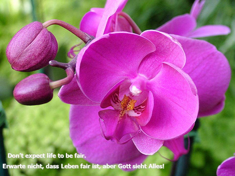 D on't expect life to be fair. Erwarte nicht, dass Leben fair ist, aber Gott sieht Alles!