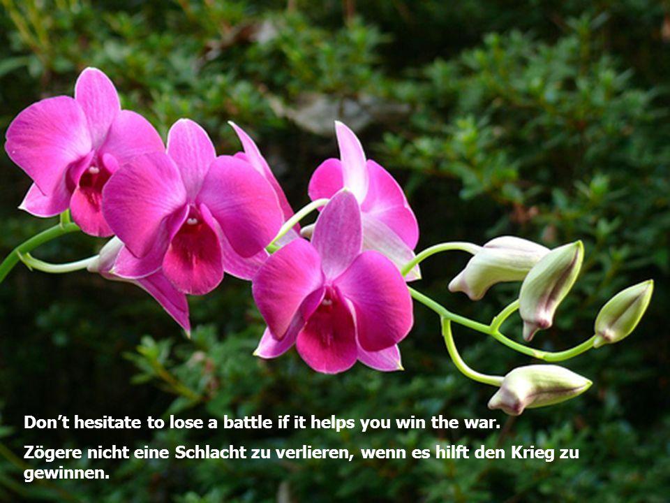 Don't hesitate to lose a battle if it helps you win the war. Zögere nicht eine Schlacht zu verlieren, wenn es hilft den Krieg zu gewinnen.