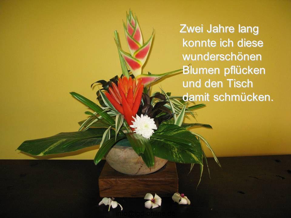 info@igd-online.de Ich habe auf deiner Seite des Pfades Blumensamen gesät, weil ich mir deines Fehlers bewusst war. Nun gießt du sie jeden Tag, wenn w