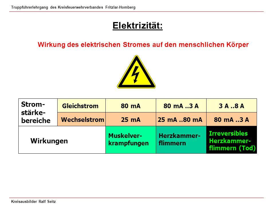 Truppführerlehrgang des Kreisfeuerwehrverbandes Fritzlar-Homberg Kreisausbilder Ralf Seitz Elektrizität: Wirkung des elektrischen Stromes auf den mens