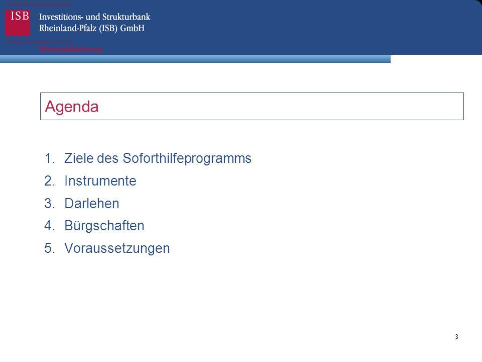 3 Agenda 1.Ziele des Soforthilfeprogramms 2.Instrumente 3.Darlehen 4.Bürgschaften 5.Voraussetzungen