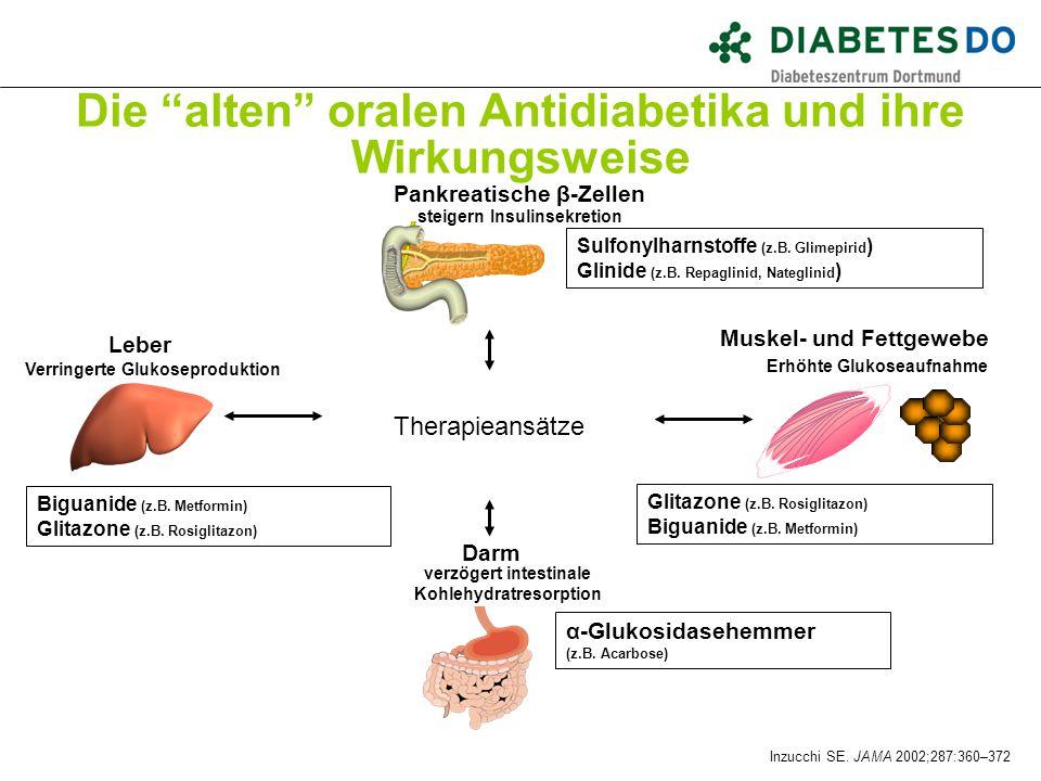 """Die """"alten"""" oralen Antidiabetika und ihre Wirkungsweise Biguanide (z.B. Metformin) Glitazone (z.B. Rosiglitazon) Biguanide (z.B. Metformin) Darm verzö"""