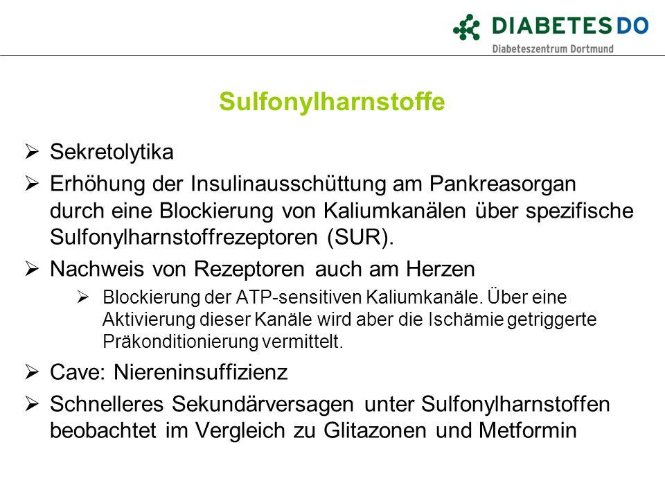 Sulfonylharnstoffe  Sekretolytika  Erhöhung der Insulinausschüttung am Pankreasorgan durch eine Blockierung von Kaliumkanälen über spezifische Sulfo