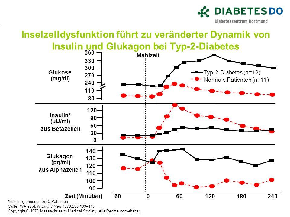 Inselzelldysfunktion führt zu veränderter Dynamik von Insulin und Glukagon bei Typ-2-Diabetes *Insulin gemessen bei 5 Patienten. Müller WA et al. N En