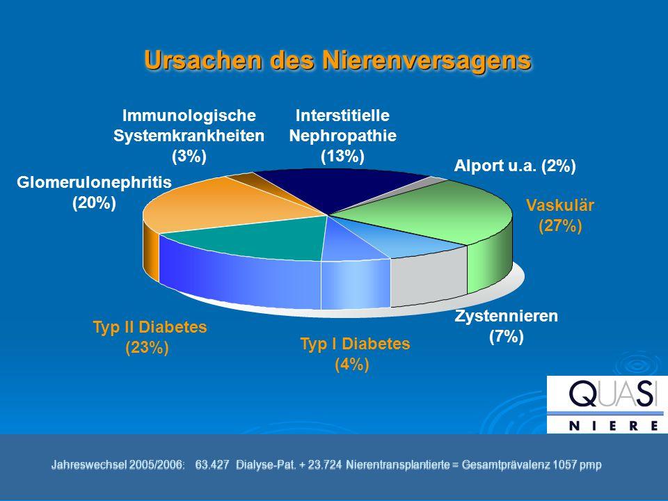 Immunologische Systemkrankheiten (3%) Typ II Diabetes (23%) Typ I Diabetes (4%) Alport u.a. (2%) Vaskulär (27%) Zystennieren (7%) Interstitielle Nephr