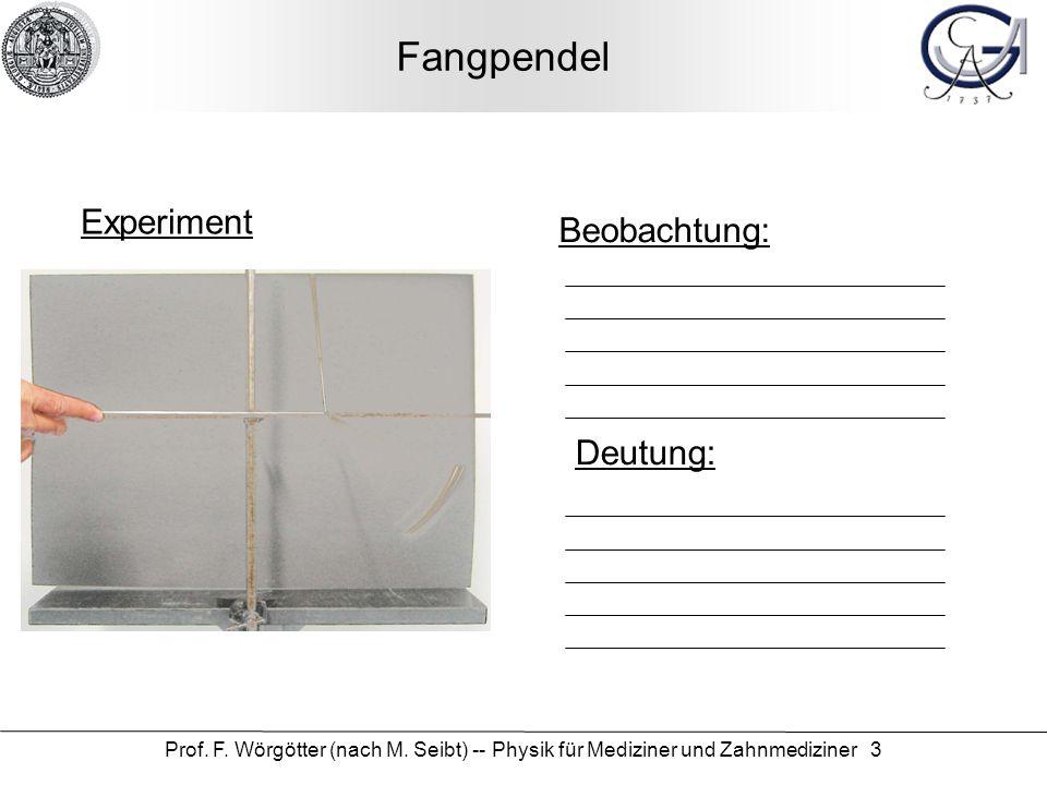 Prof. F. Wörgötter (nach M. Seibt) -- Physik für Mediziner und Zahnmediziner 3 Fangpendel Experiment Beobachtung: Deutung: