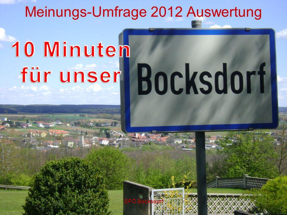SPÖ Bocksdorf Meinungs-Umfrage 2012 Auswertung