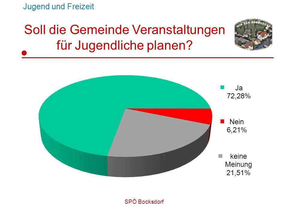 SPÖ Bocksdorf Soll die Gemeinde Veranstaltungen für Jugendliche planen? Jugend und Freizeit