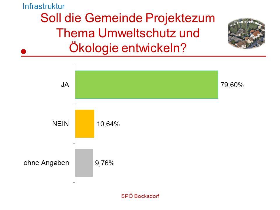 SPÖ Bocksdorf Infrastruktur Soll die Gemeinde Projektezum Thema Umweltschutz und Ökologie entwickeln