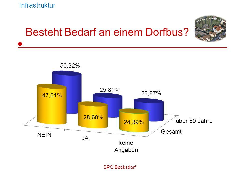 SPÖ Bocksdorf Besteht Bedarf an einem Dorfbus? Infrastruktur