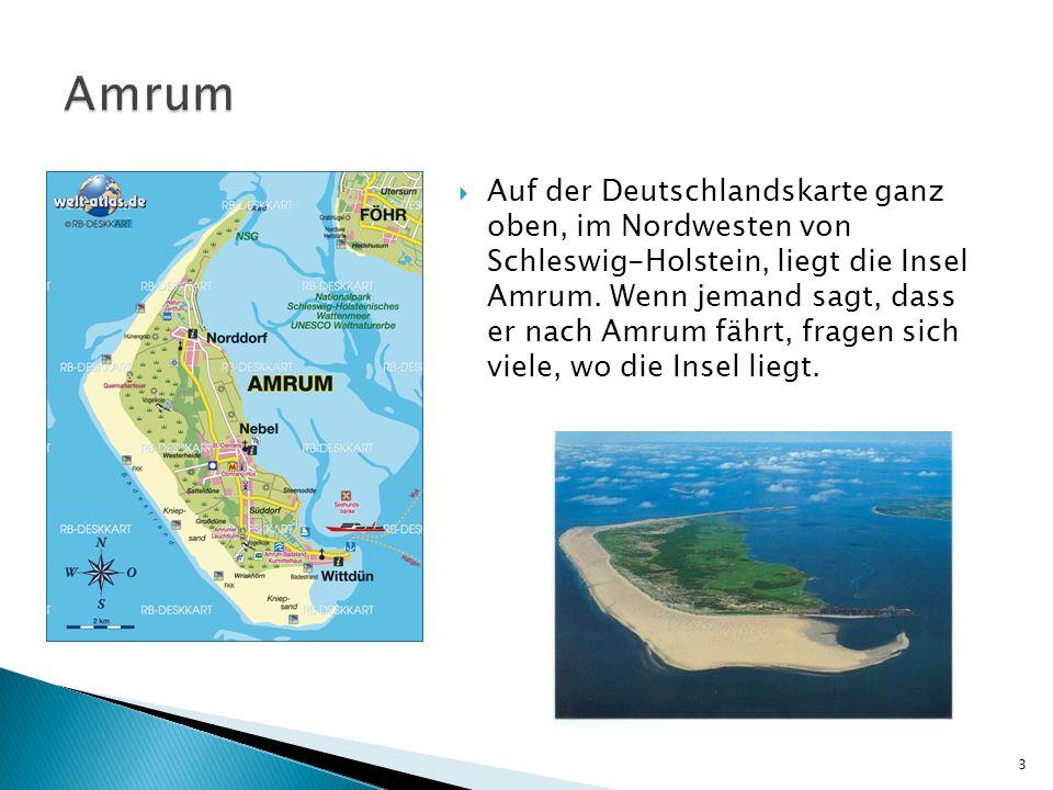  Auf der Deutschlandskarte ganz oben, im Nordwesten von Schleswig-Holstein, liegt die Insel Amrum. Wenn jemand sagt, dass er nach Amrum fährt, fragen