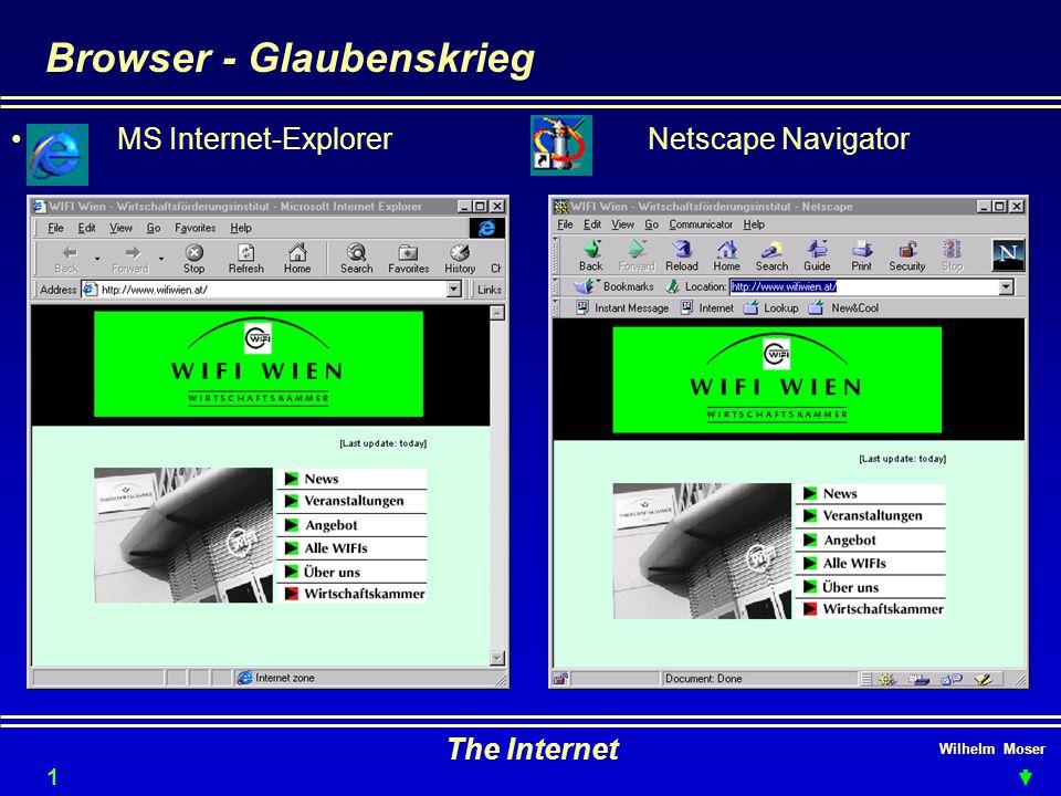 Wilhelm Moser The Internet Browser - Glaubenskrieg 13 MS Internet-ExplorerNetscape Navigator