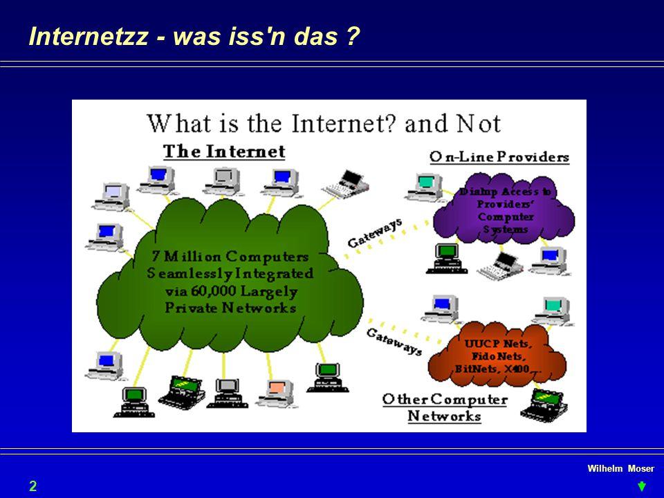 Wilhelm Moser Internetzz - was iss'n das ? 2
