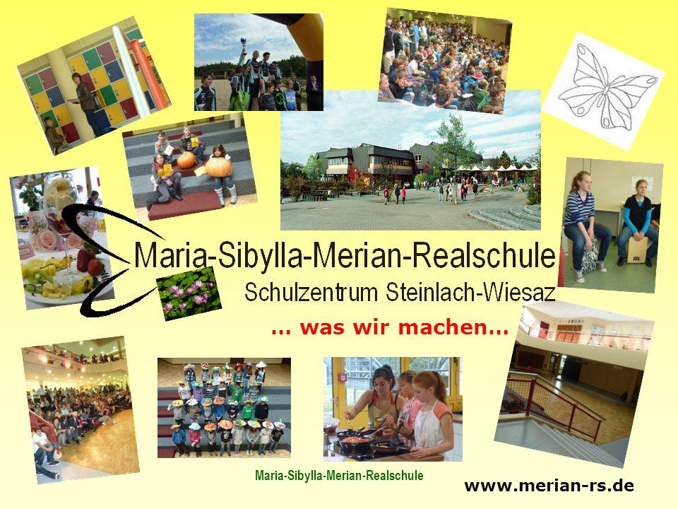 Maria-Sibylla-Merian-Realschule … was wir machen… www.merian-rs.de