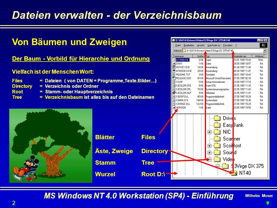 Wilhelm Moser MS Windows NT 4.0 Workstation (SP4) - Einführung Dateien verwalten - der Verzeichnisbaum Der Baum - Vorbild für Hierarchie und Ordnung W