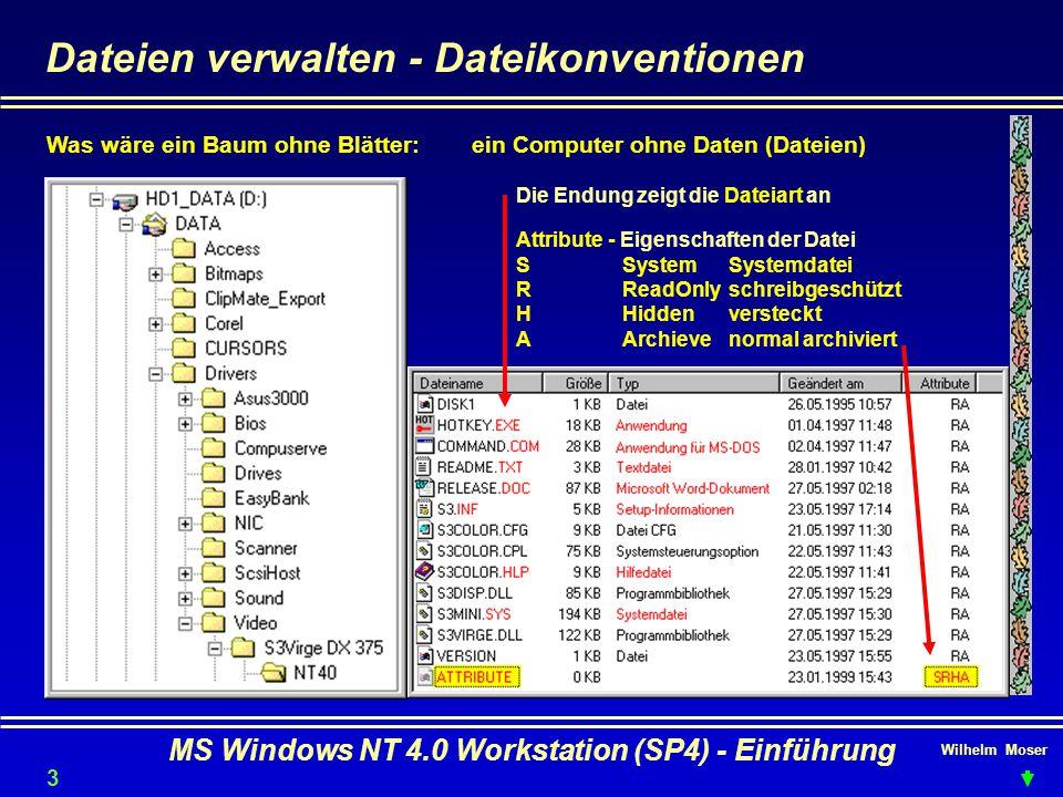 Wilhelm Moser MS Windows NT 4.0 Workstation (SP4) - Einführung Dateien verwalten - Dateikonventionen Was wäre ein Baum ohne Blätter:ein Computer ohne