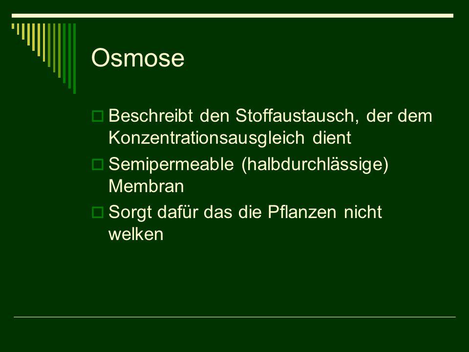 Osmose  Beschreibt den Stoffaustausch, der dem Konzentrationsausgleich dient  Semipermeable (halbdurchlässige) Membran  Sorgt dafür das die Pflanze