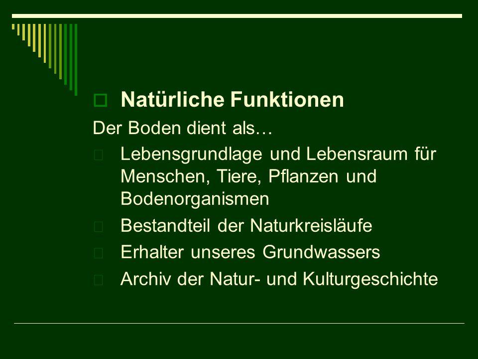  Natürliche Funktionen Der Boden dient als…  Lebensgrundlage und Lebensraum für Menschen, Tiere, Pflanzen und Bodenorganismen  Bestandteil der Natu