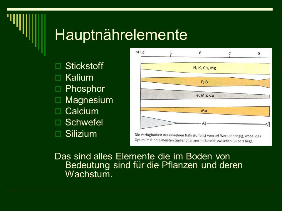 Hauptnährelemente  Stickstoff  Kalium  Phosphor  Magnesium  Calcium  Schwefel  Silizium Das sind alles Elemente die im Boden von Bedeutung sind