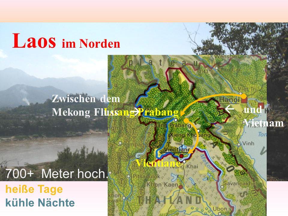 Laos im Norden 700+ Meter hoch.
