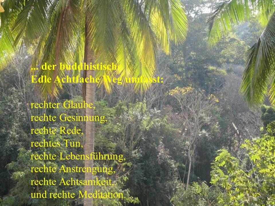 ... der buddhistische Edle Achtfache Weg umfasst: rechter Glaube, rechte Gesinnung, rechte Rede, rechtes Tun, rechte Lebensführung, rechte Anstrengung