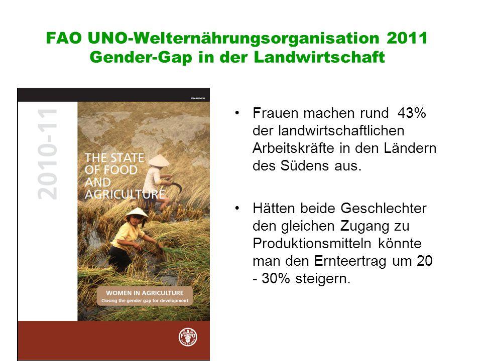 FAO UNO-Welternährungsorganisation 2011 Gender-Gap in der Landwirtschaft Frauen machen rund 43% der landwirtschaftlichen Arbeitskräfte in den Ländern