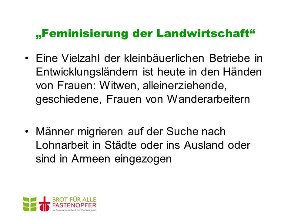 """""""Feminisierung der Landwirtschaft"""" Eine Vielzahl der kleinbäuerlichen Betriebe in Entwicklungsländern ist heute in den Händen von Frauen: Witwen, alle"""