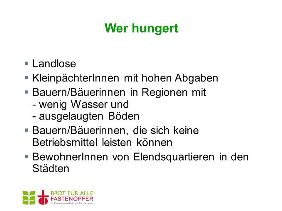 Wer hungert  Landlose  KleinpächterInnen mit hohen Abgaben  Bauern/Bäuerinnen in Regionen mit - wenig Wasser und - ausgelaugten Böden  Bauern/Bäuerinnen, die sich keine Betriebsmittel leisten können  BewohnerInnen von Elendsquartieren in den Städten