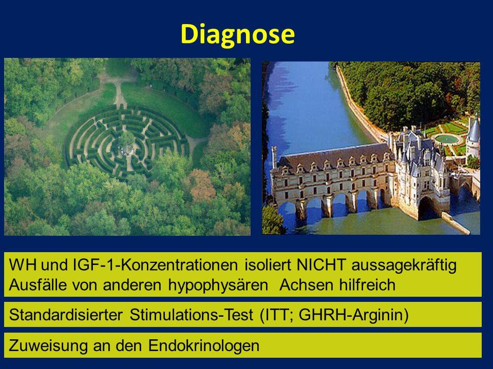 Diagnose WH und IGF-1-Konzentrationen isoliert NICHT aussagekräftig Ausfälle von anderen hypophysären Achsen hilfreich Zuweisung an den Endokrinologen