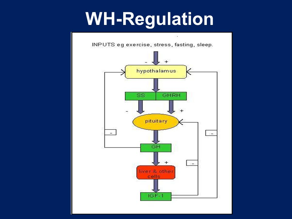 WH-Regulation