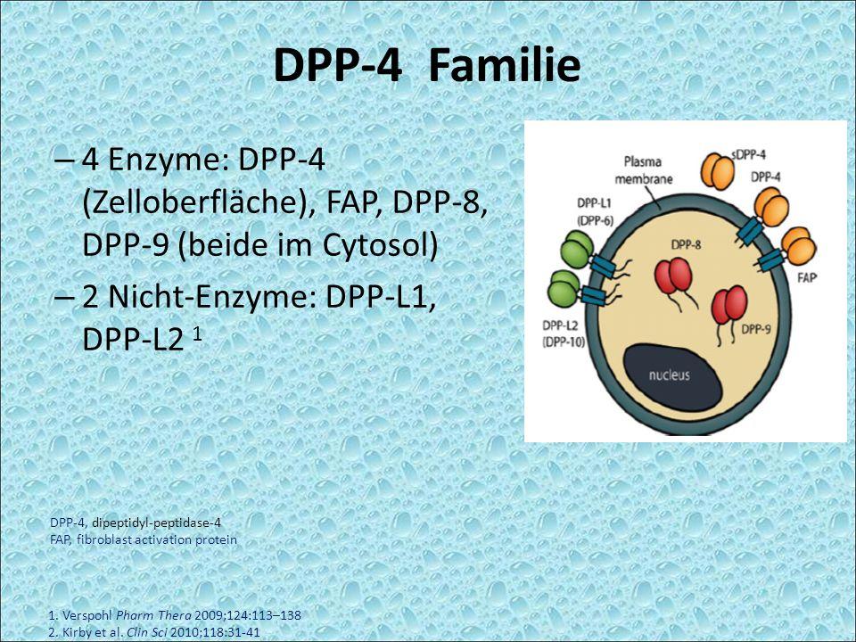 – 4 Enzyme: DPP-4 (Zelloberfläche), FAP, DPP-8, DPP-9 (beide im Cytosol) – 2 Nicht-Enzyme: DPP-L1, DPP-L2 1 1. Verspohl Pharm Thera 2009;124:113–138 2