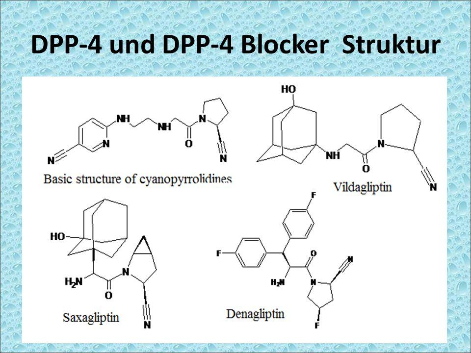 DPP-4 und DPP-4 Blocker Struktur
