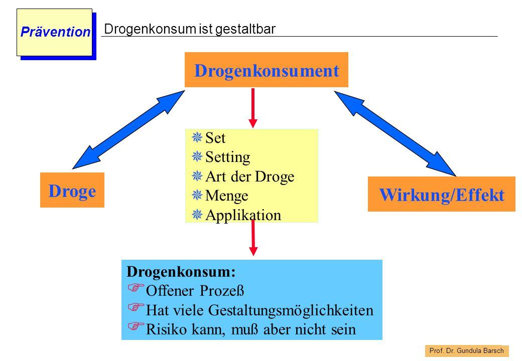 Prof. Dr. Gundula Barsch Prävention Droge Wirkung/Effekt Drogenkonsument  Set  Setting  Art der Droge  Menge  Applikation Drogenkonsum:  Offener