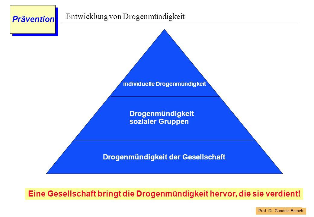 Prof. Dr. Gundula Barsch Prävention Entwicklung von Drogenmündigkeit Drogenmündigkeit der Gesellschaft Drogenmündigkeit sozialer Gruppen individuelle