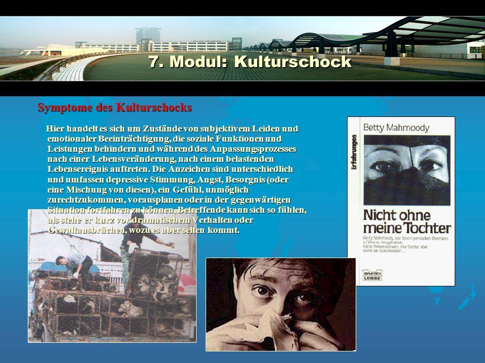 7.Modul:Kulturschock 7.