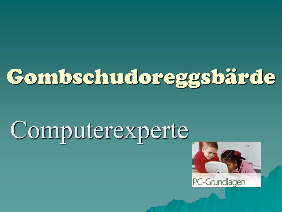 Gombschudoreggsbärde Computerexperte