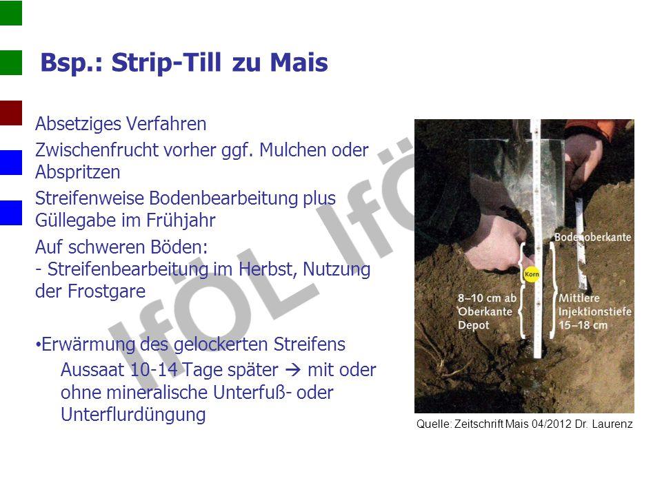 Bsp.: Strip-Till zu Mais Absetziges Verfahren Zwischenfrucht vorher ggf. Mulchen oder Abspritzen Streifenweise Bodenbearbeitung plus Güllegabe im Früh