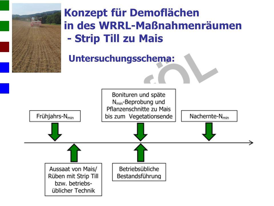 Konzept für Demoflächen in des WRRL-Maßnahmenräumen - Strip Till zu Mais Untersuchungsschema:
