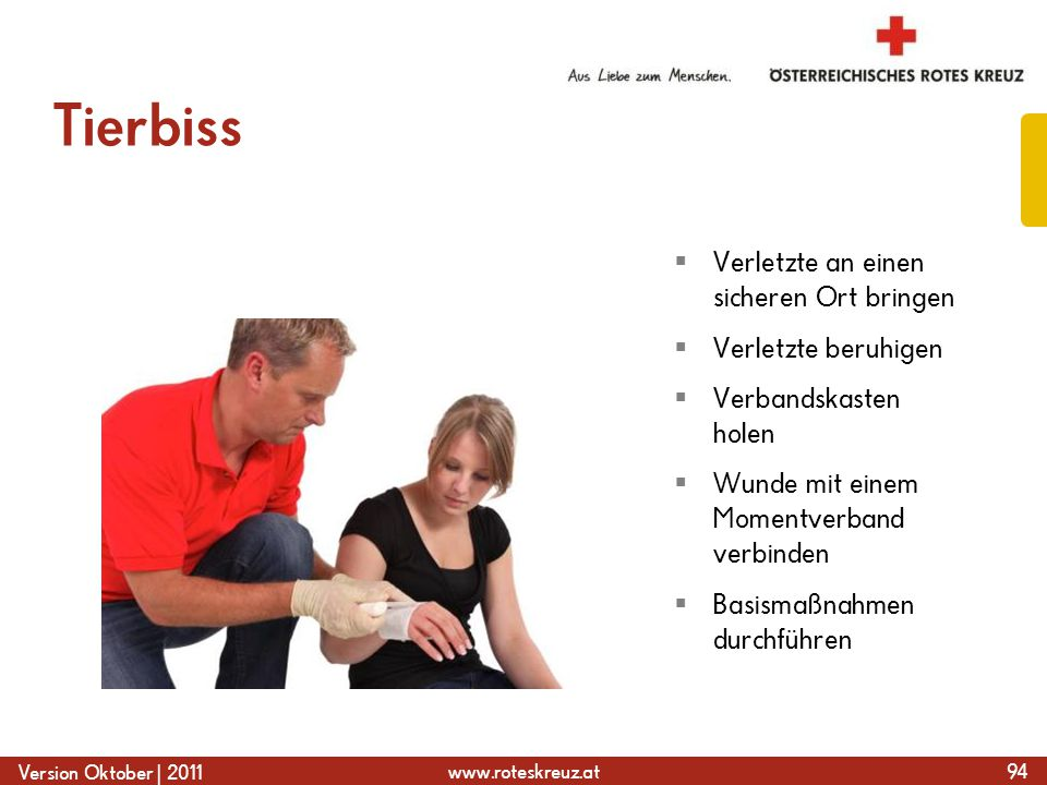 www.roteskreuz.at Version Oktober | 2011 Tierbiss 94  Verletzte an einen sicheren Ort bringen  Verletzte beruhigen  Verbandskasten holen  Wunde mit einem Momentverband verbinden  Basismaßnahmen durchführen