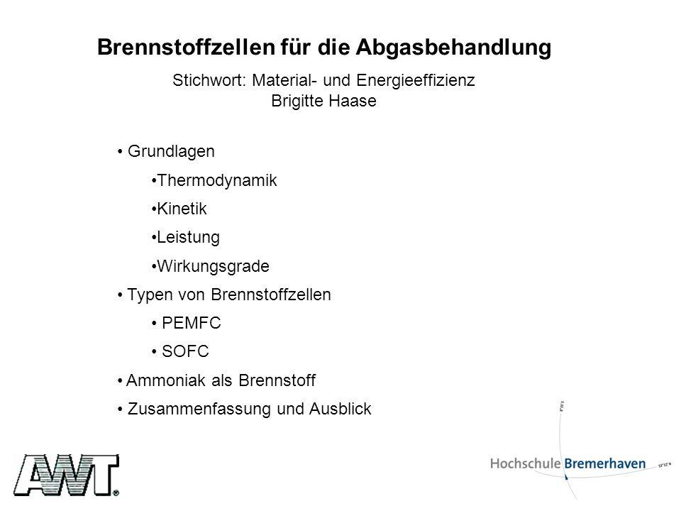 Brennstoffzellen für die Abgasbehandlung Stichwort: Material- und Energieeffizienz Brigitte Haase Grundlagen Thermodynamik Kinetik Leistung Wirkungsgr