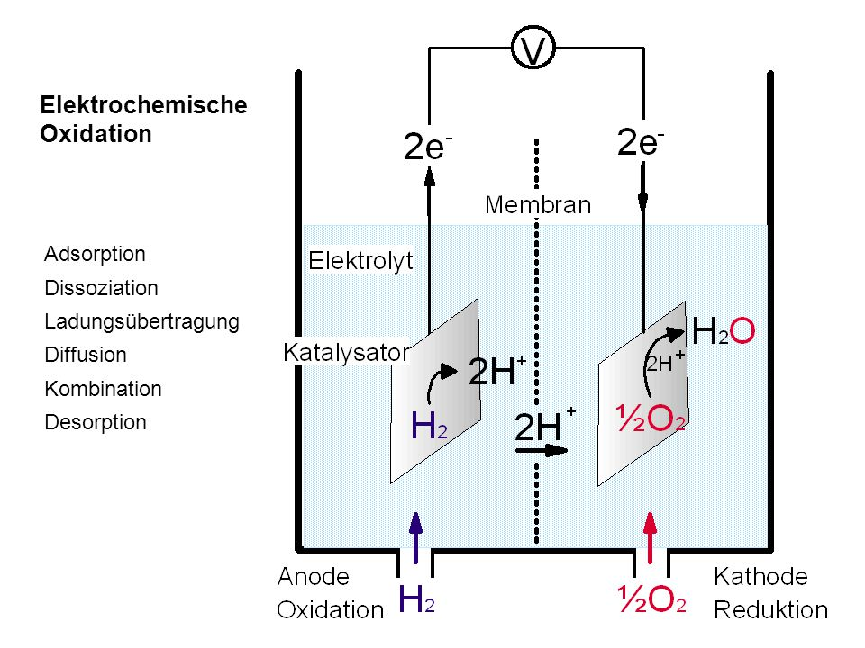 Elektrochemische Oxidation Adsorption Dissoziation Ladungsübertragung Diffusion Kombination Desorption