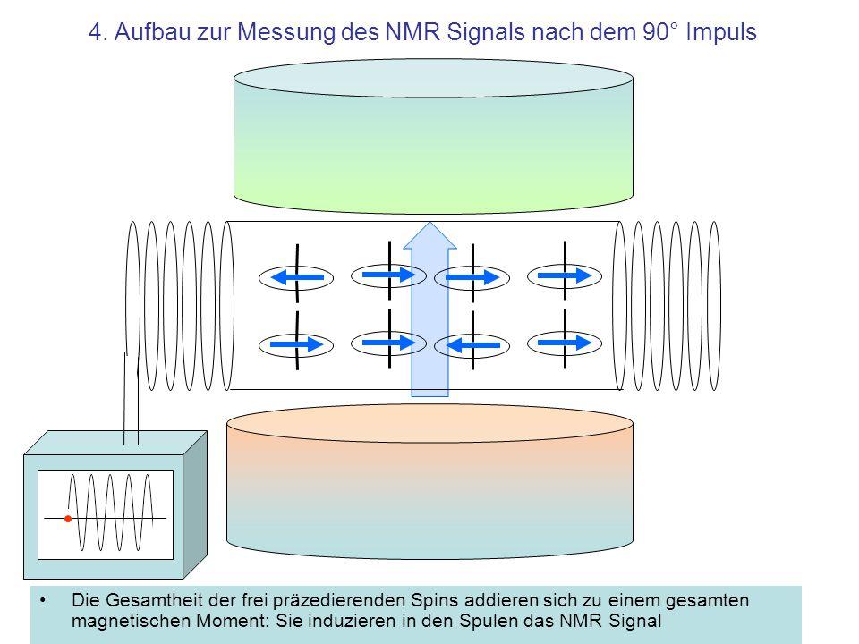 4. Aufbau zur Messung des NMR Signals nach dem 90° Impuls Die Gesamtheit der frei präzedierenden Spins addieren sich zu einem gesamten magnetischen Mo