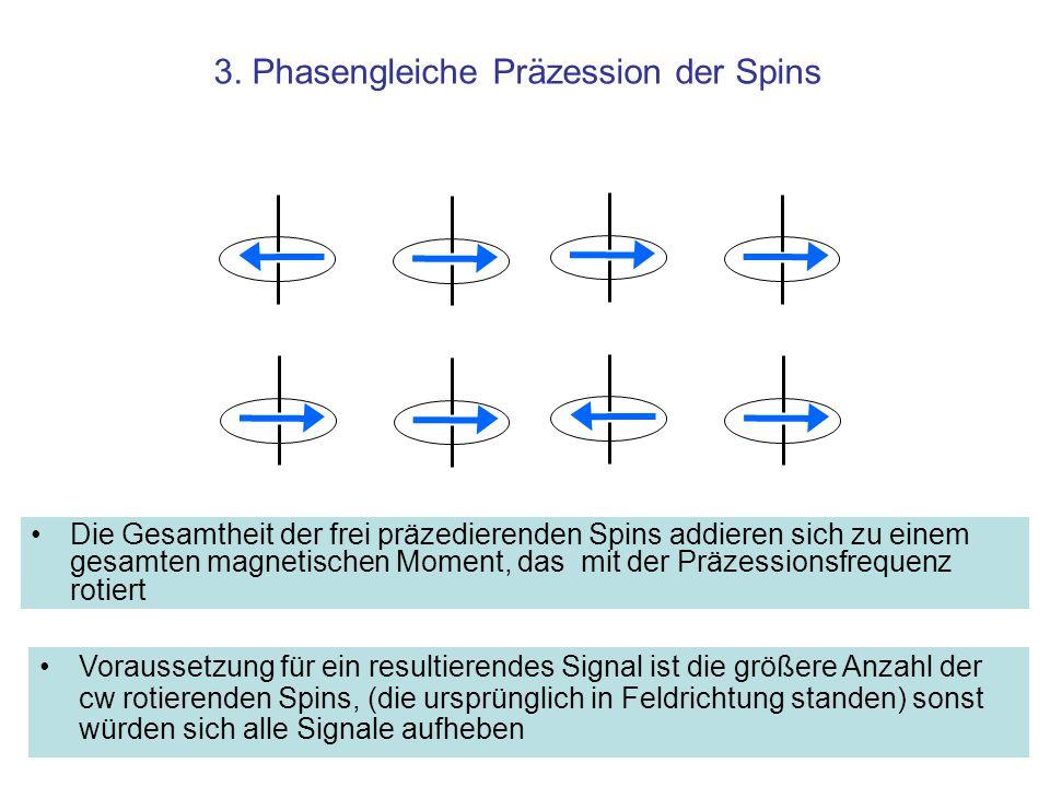 3. Phasengleiche Präzession der Spins Die Gesamtheit der frei präzedierenden Spins addieren sich zu einem gesamten magnetischen Moment, das mit der Pr