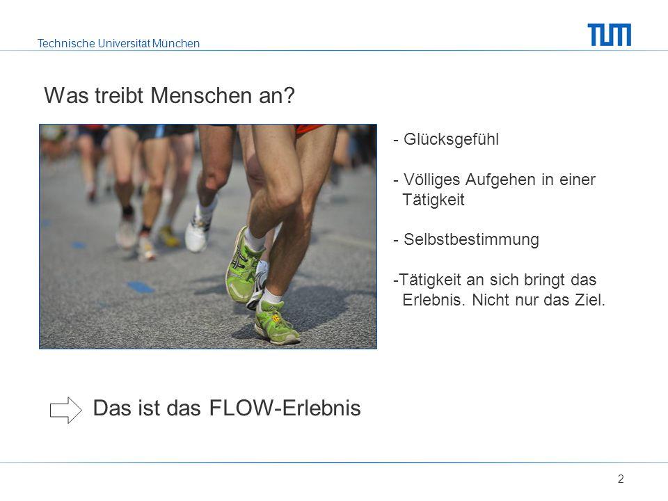 Technische Universität München Was treibt Menschen an? 2 - Glücksgefühl - Völliges Aufgehen in einer Tätigkeit - Selbstbestimmung -Tätigkeit an sich b