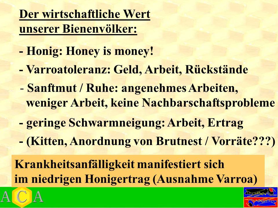 - Honig: Honey is money! Der wirtschaftliche Wert unserer Bienenvölker: - Varroatoleranz: Geld, Arbeit, Rückstände - Sanftmut / Ruhe: angenehmes Arbei