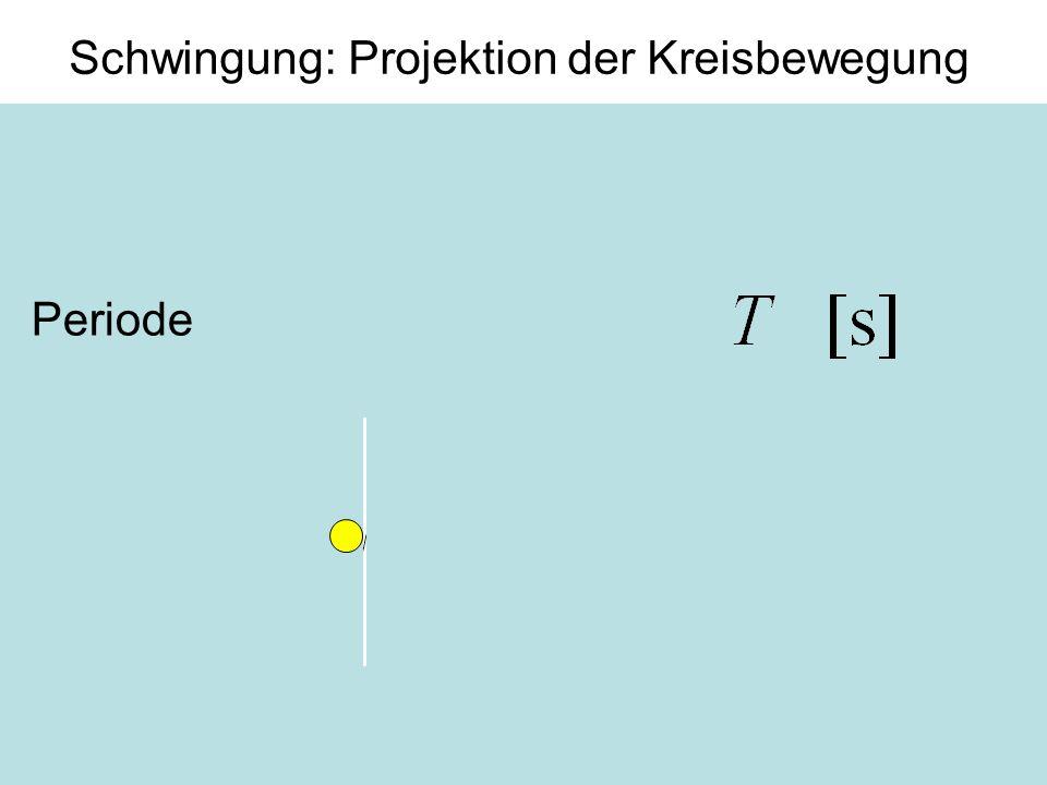 6 Schwingung: Projektion der Kreisbewegung Periode